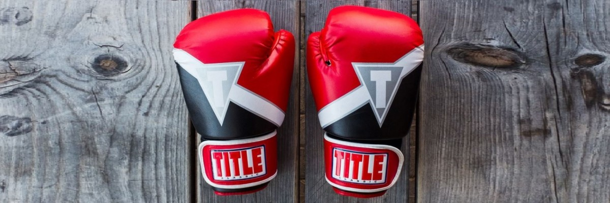 Boxing & MMA grappling gloves