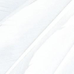 Badminton feathers Spokey AIR PRO