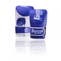 Boxing gloves BOXEUR BXT-5140