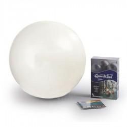 Gymnastics ball Original Pezzi Gymnastik Ball Maxafe 53 cm, White