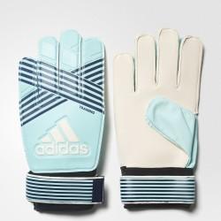 Goalkeeper gloves adidas ACE TRAINING BQ4588 sea-green, white logo